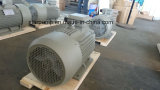 Hierro Y2 que echa el motor eléctrico trifásico - motor estándar