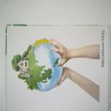 Papier de pierre de papier de protection de l'environnement de Rbd250um 350GSM