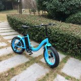 Low Step 20 pouces Fat Tire E Bike for Kids