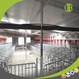 Parada al por mayor de la gestación/parada individual conveniente para todas las granjas de cerdo