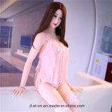 Les Boobs gonflables de Jl 158cm mûrissent la poupée de sexe de jeune Madame poney pour l'homme