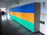 Локер шкафа Padlock для гимнастики/школы