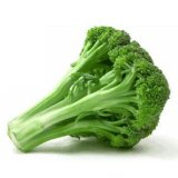 Extrait de graine de broccoli