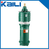 MehrstufenCentrifugal Submersible Pump (QD, q-Serien)