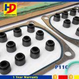 Hino 트럭 디젤 엔진 P11c를 위한 가득 차있는 정밀검사 틈막이 장비