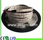 Imprägniern Dekoration-Niederspannung 2017 120LED/M 12V SMD flexiblen LED-Streifen Light3528