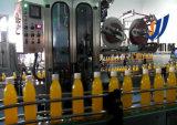 Línea automática completa planta de la máquina de la producción del relleno en caliente del jugo de Concntrated de la fruta de la botella de cristal del animal doméstico del equipo