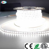 luz de tira colorida de 110V/120V/220V/240V/277V 5050 RGB LED con el regulador