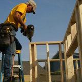 El zinc galvanizado plástico Uñas Strip para la Construcción, Decoración, furnituring