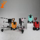 工場価格2017の熱い販売の大人のためのFoldable 3つの車輪の電気スクーター