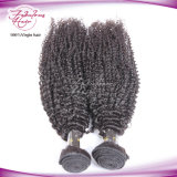매력적인 자연적인 머리 씨실 엉킴 자유로운 페루 비꼬인 곱슬머리