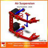 Crear la suspensión del carro para requisitos particulares pesado de la función de la elevación