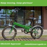 脂肪質のタイヤが付いている2017雪の電気小型のバイク