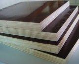 Le film a fait face au peuplier/au bouleau/au contre-plaqué de bois durs pour la construction