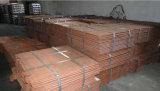 La cathode de cuivre 99 99 évaluent a