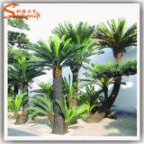 Il costume di plastica artificiale della palma lascia i POT della palma