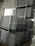 Het Staal van de steiger/de Straal van de Ladder Aluninum voor Bouw