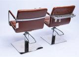 [ألد سكهوول] يهذّب كرسي تثبيت مع ملائمة مجفّف حامل ([م-007-82])