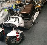 Motocicleta 1000 elétrica da bateria acidificada ao chumbo de W