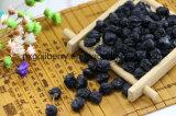 Commercio all'ingrosso nero della frutta di Wolfberrry della nespola