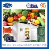 低温のためのより冷たいクーラーの冷蔵室