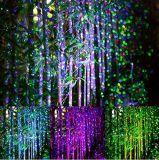Iluminación del paisaje, ducha al aire libre del laser de la noche de la estrella de la luz de la Navidad impermeable
