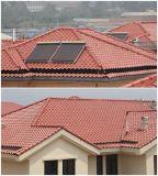 Tuile de toit d'argile pour la tuile de plafond d'épreuve de neige de l'eau de villa