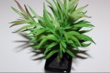 De Kunstmatige Bloemen Succulents/de Installaties van uitstekende kwaliteit voor de Decoratie van het Huis/van het Bureau