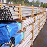 317/1.4449 de Buis van U van het roestvrij staal (OD 12.776mm GEWICHT 0.715.16mm)