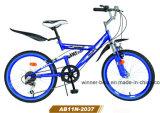 Una bicicletta dei 20 '' bambini della sospensione (AB12N-2040)