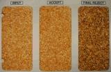 풀 컬러 Vsee에 의하여 탈수되는 야채 마늘 색깔 분류하는 사람 곡물 분리기