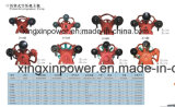 Diesel, motor de gasolina o eléctrico del compresor de aire 50L, 100L, 150L