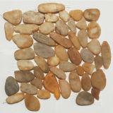 Ajardinando o mosaico da pedra do seixo do engranzamento