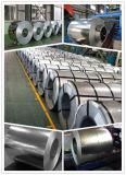 Chapa de aço galvanizada Pre-Paninted de China para o edifício