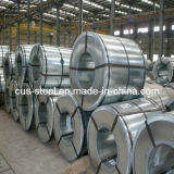 PPGI/PPGL/Color Steel Coil 또는 Prepainted Galvanized Steel Coil