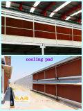 Machines automatiques de ferme avicole avec la Chambre préfabriquée pour sur un seul point de vente