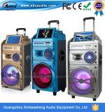 12 Zoll PA-nachladbarer Laufkatze-Lautsprecher mit DVD Funktion