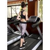 Оптовое изготовление OEM износа йоги Sportswear способа повелительниц
