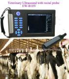 De veterinaire Handbediende Scanner van de Ultrasone klank ew-B10V met Rectale Sonde LV7.5/60 voor Zwangerschap van Grote Dieren