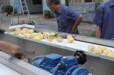 フルオートマチックのポテトの洗浄の皮の磨く切断のウェイティングのパッキング生産ライン