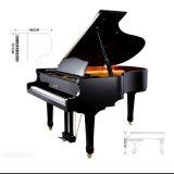 Bois d'ébène Black Grand Piano 186cm Height