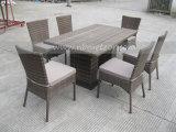 Mtc082藤のダイニングテーブルの一定の屋外の家具