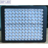 GIP 600W LED Grow Light voor Medical Hemp Plant