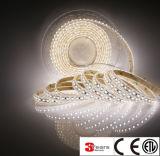 120leds / M 3528 luz de tira IP67 con sílice Epistar chip CRI> 90 ETL