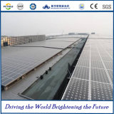 China-Goldlieferant für industrielles und Handels-PV-System