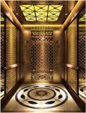 Sr. grabado al agua fuerte espejo y Mrl Aksen Hl-X-006 de la elevación del elevador del pasajero