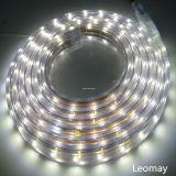 60LEDs/m 220V 높은 볼트 SMD 5050 LED 지구 빛