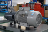 Fabrikant van de Directe Gedreven Roterende Compressor van de Lucht van de Schroef (22kw--400kw)