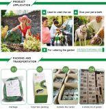 Tuyau de jardin extensible avec les garnitures en laiton pour particulièrement le marché des Etats-Unis
