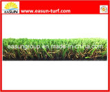 Het Gras van de tuin (N4SD1820)